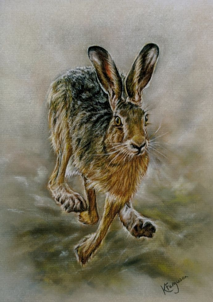 Running Hare limited edition giclee print